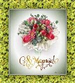 музыкальная открытка к 8 марта, берегите женщин, открытки с 8 марта, цветы