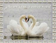 музыкальное поздравление к 8 марта, открытка музыкальная, милая жена, открытка для любимой жены с 8 марта