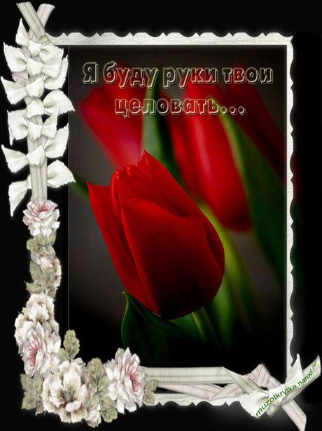 Музыкальное поздравление с 8 марта для любимой женщины с кодом,открытка музыкальная от muzotkrytka.narod.ru,Николай Басков - Я буду руки твои целовать,открытка для самой лучшей женщины с 8 марта.
