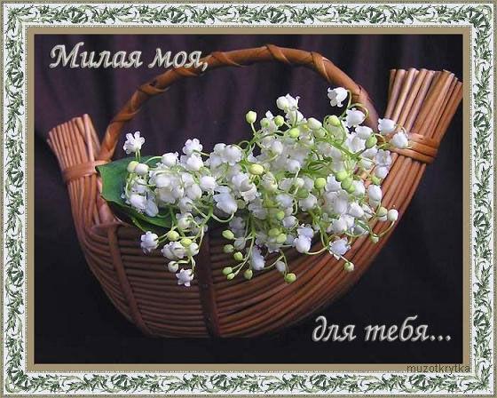 Музыкальная открытка к 8 марта,Милая моя,открытка для любимой ландыши.