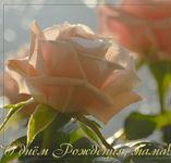 MuzOtkrytka, музыкальная открытка с днем рождения мама, слушать онлайн, отправить по электронной почте, текст песни, открытка роза с днем рождения с кодом
