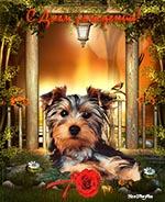 открытка музыкальная с днем рождения, анимационная открытка с днем рождения, анимация забавный щенок с красной розой