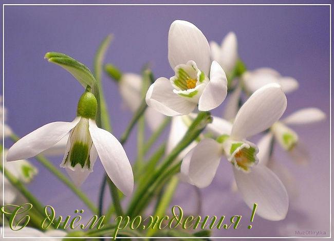 http://muzotkrytka.narod.ru/DR/74.jpg
