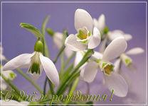 музыкальная открытка с днем рождения новорожденому, поздравительная открытка с днем рождения весенний цветок