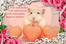 музыкальная открытка для любимой девушки, музыкальная открытка с кодом, хомяк с сердечками, розы, анимационная открытка