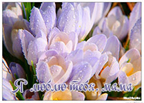 музыкальная открытка маме,К9 - Я Люблю тебя Мама,анимационная открытка для мамы