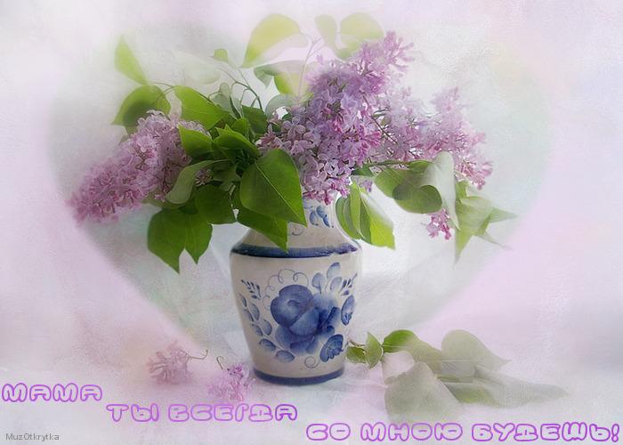 Светлана Лазарева - Мама
