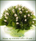 музыкальные открытки для мамы, анимационая открытка маме, белые тюльпаны огромный букет