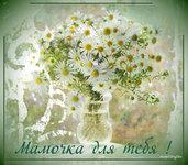 музыкальные открытки для мамы о маме, Мамочка,анимационая открытка маме,букет ромашек