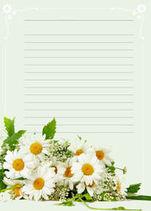 красивая бумага для письма, ромашки, распечатать, бесплатные шаблоны
